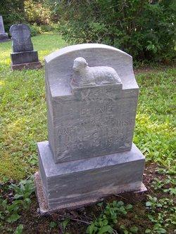 Elaine Lena <i>Pederson</i> Arnquist