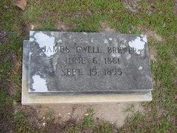 James Ewell Brewer
