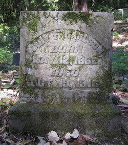 Mary F Carlson