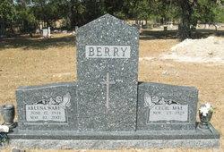 Arlena <i>Ware</i> Berry