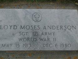 Sgt Lloyd Moses Anderson