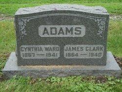 Cynthia <i>Ward</i> Adams