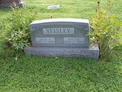 Allie B Yeisley