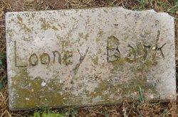 Looney Bark