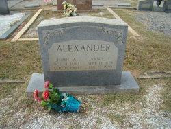 Annie Elizabeth <i>Edwards</i> Alexander