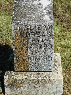 Leslie Wells Andreas