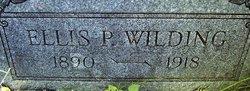 Ellis P Wilding