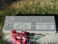 Albert P. Blake