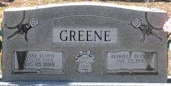 Jesse Lloyd Buddy Greene, Sr