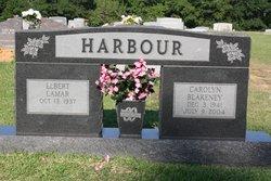 Carolyn Ann <i>Blakeney</i> Harbour