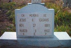Jesus B Casaus