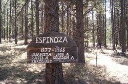 Espinoza Family Cemetery