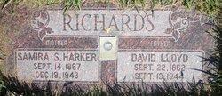 David Lloyd Richards