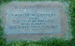 Ambrose Mason Cannon