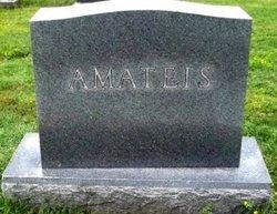 Louis Luigi Amateis