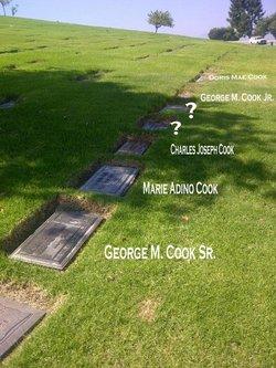 George McKinley Cook, Sr