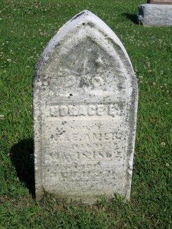 Horace Ellmore Ames