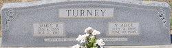 Nancy Alice <i>Daniel</i> Turney