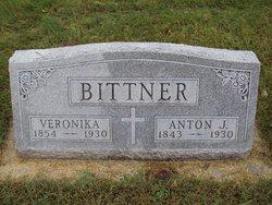 Anton J Bittner