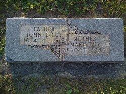 John J Luy