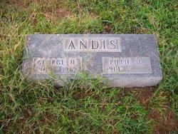 George Henry Andis