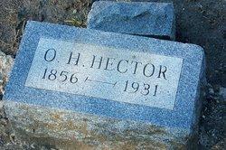 Olynthus Hugh Hector