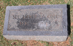 Sue <i>Emmerson</i> Cole