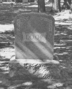 William Henry Loop