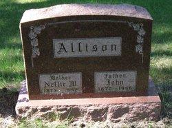Nellie M. Allison