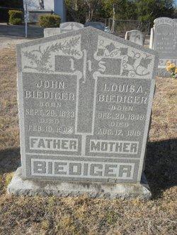 Louisa <i>Lieber</i> Biediger