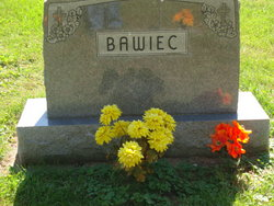 Adam M Bawiec