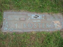 George Koster
