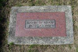 David Hay Adam