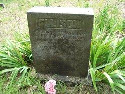 Cleveland Ellison