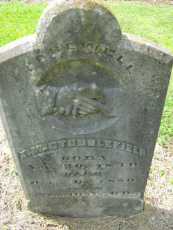 A. M. Stubblefield