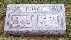Agnes N. Busch