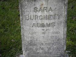 Sara <i>Burchett</i> Adams