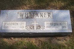 Andrew J Whitaker