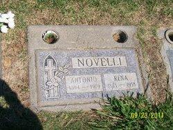 Antonio Novelli
