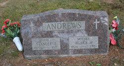 Agnes M Andrews