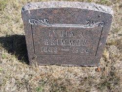 Lydia A <i>Warren</i> Brimmer