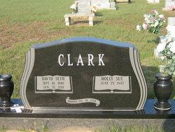 David S Clark