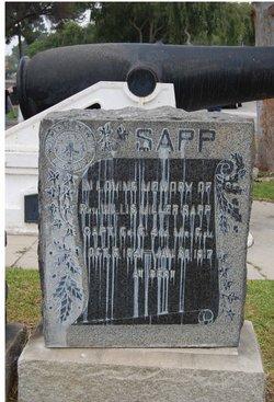 Rev Willis Miller Sapp