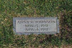 Anna V Johnson