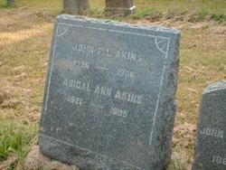 Abigail Ann Akins