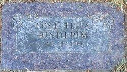 Cozie Ellen <i>Fulton</i> Binderim