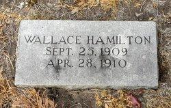 Wallace Lee Hamilton