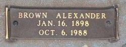 Brown Alexander Foil