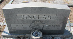 Joel N Bigham