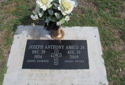 Joseph Anthony Amico, Jr